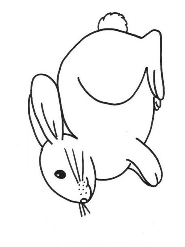 kleurplaat konijn leukekleurplaten nl