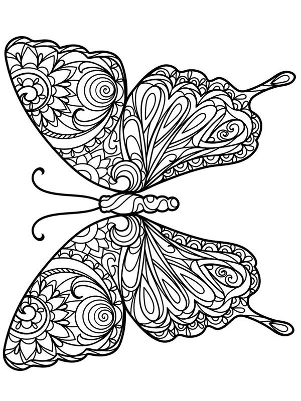 kleurplaat vlinder voor volwassenen leukekleurplaten nl